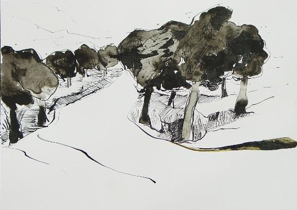 Stavros Kotsireas / Artist