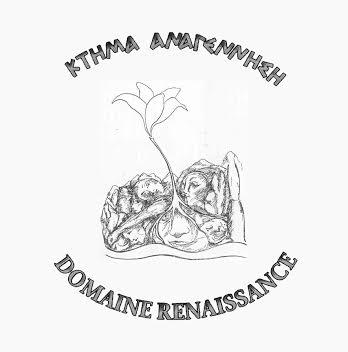 Ktima Anagennisi (Domain Renaissance).